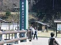 コウノトリ公園