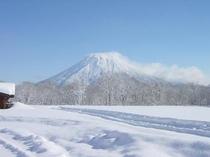 niseko winter -1