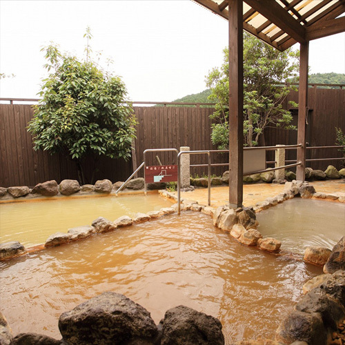 豊富な湯とゆの花が特徴の炭酸泉(女性浴場)