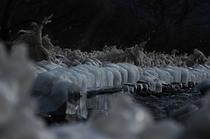 猪苗代湖Ⅳ