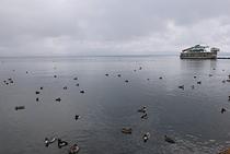 猪苗代湖Ⅸ