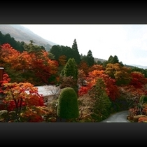 ■ 本館からの紅葉景色