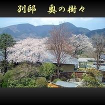 ■ 【別邸】 俯瞰