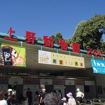 上野動物園☆何回行っても楽しめる動物園。上野公園内にあります。