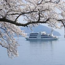海津大崎桜クルーズ(Photo:琵琶湖汽船)