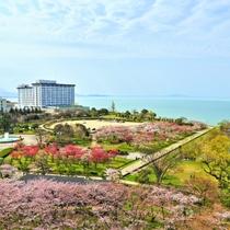 【Hotel&Resorts NAGAHAMA】琵琶湖畔に建つリゾートホテルで寛ぎのひとときを