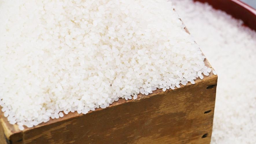 ■【お米】会津産コシヒカリを村の湧き水で炊いています☆自慢の美味しさです!