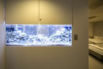 713号室/大きな水槽を覗くと、熱帯魚がお出迎え。