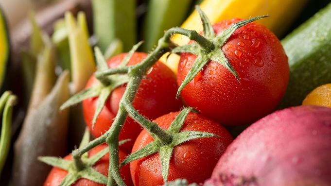 <ファミリー向けお得プラン♪>オーガニック野菜と豊後牛堪能!季節の里山会席 スタンダードプラン