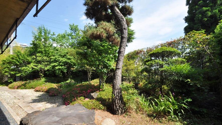 【和室17畳】庭園ビューを目の前でお楽しみください。