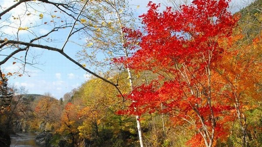 【秋深まる『錦仙峡』】