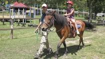 木曽馬の引き馬体験