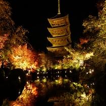 ■東寺 紅葉