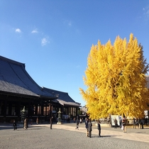 ■東本願寺