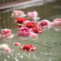【お風呂】バラを浮かべたお風呂に思わずうっとり♪
