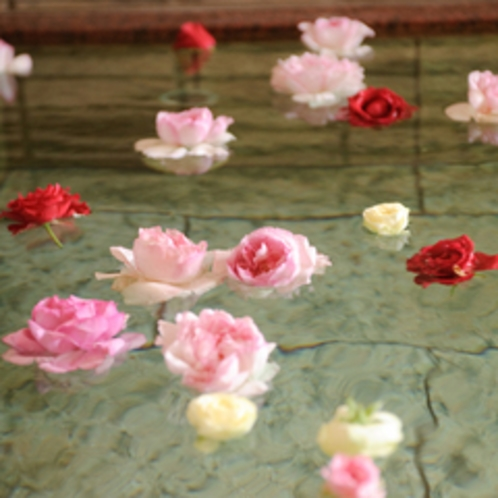 【お風呂】季節のバラを浮かべたお風呂です。