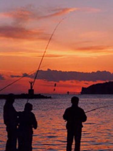 勝浦漁港の夕景(1)