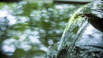 蓼科山のふもと、親湯を象徴する一枚の大巌からこんこんと湧く湯