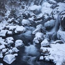 ◆冬の滝の湯川
