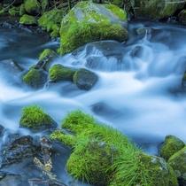 □滝の湯川