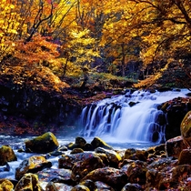 ◇蓼科大滝と紅葉