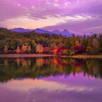 ◇蓼科の秋