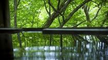 清らかな渓流と深い森が織りなす渓谷の絶景と静謐な雰囲気をお楽しみいただけます