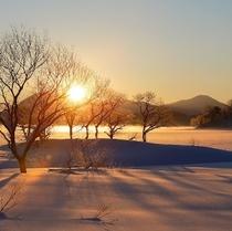冬の桧原湖:一例
