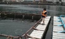 海上釣り堀