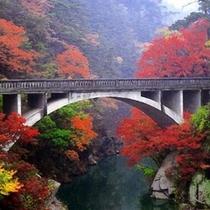 紅葉昇仙峡 橋