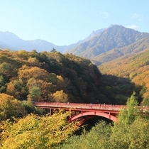 八ケ岳 秋橋