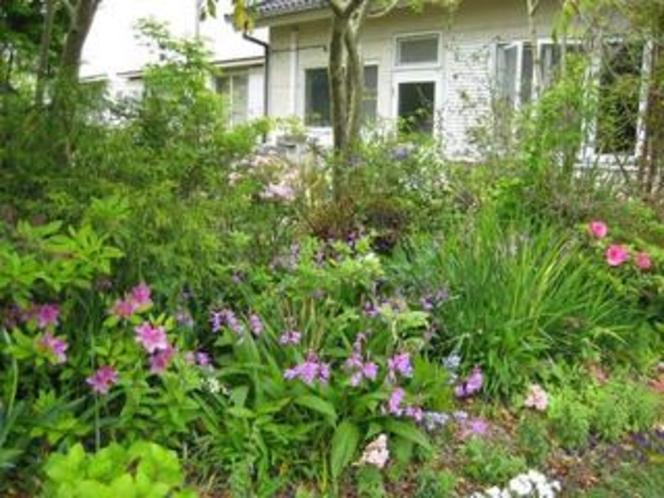 花と緑に囲まれた「ペンション青葉」です③