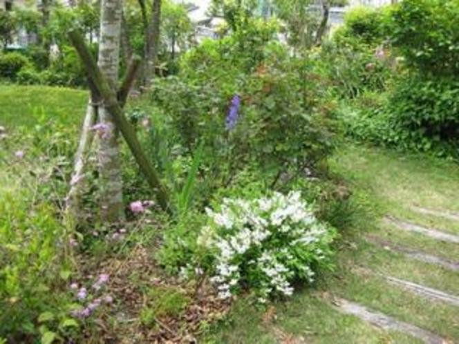 花と緑に囲まれた「ペンション青葉」です⑤