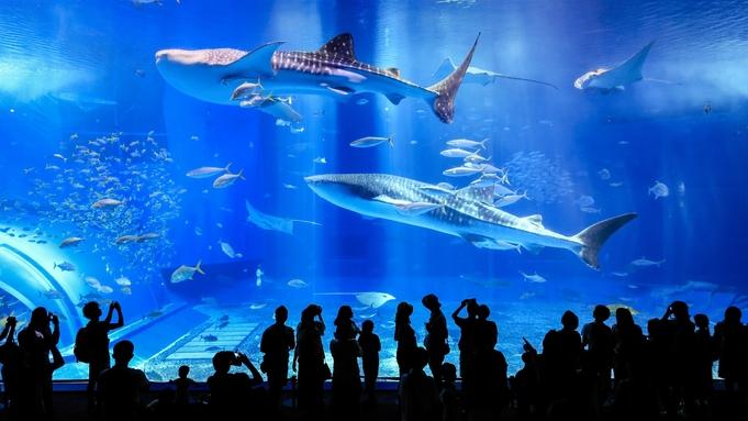【ジンベイザメに会いに行こう!】全国水族館ランキング第1位!沖縄美ら海水族館に行ってきたらい〜さ〜♪