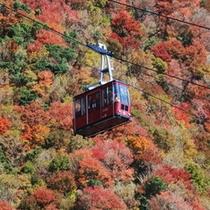 <雲仙ロープウェイ・秋>紅葉例年見ごろ10月下旬~11月上旬 山頂到着直前のゴンドラからの景観は格別