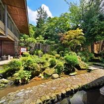 ■昼の中庭