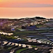 <南串山町 棚畑>当館よりお車で約30分。火山が作った大地に広大な段々畑が広がります。