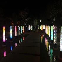 月岡温泉観光庭園「月あかりの庭」