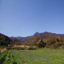 秋の風景01
