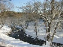 冬の標津川