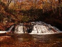 秋の養老の滝