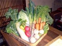 契約農家より届く新鮮な野菜を使って調理