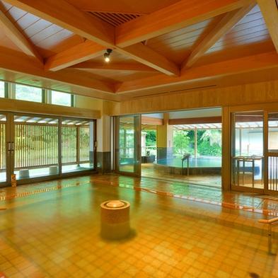 【浜千鳥コース(2名様〜5名様)】【広間休憩】癒しの温泉でのんびりリフレッシュ