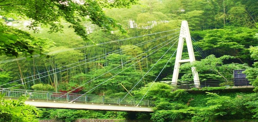 敷地内をかかる吊橋