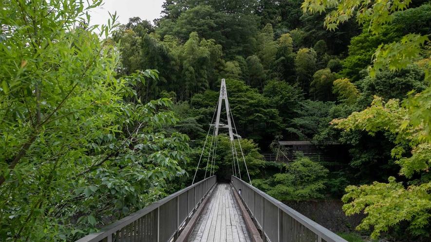 観山 橋2