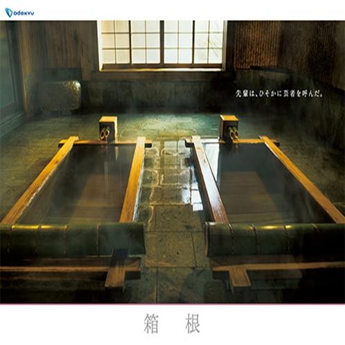 小田急ロマンスカー2015冬ポスター。当館の貸切風呂「男爵の湯」が使用されました。
