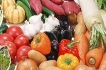 自家農園の野菜