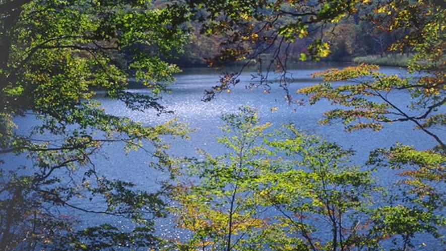 *【平ヶ倉沼】四季の移ろいを楽しめる平ヶ倉沼(車で約40分)
