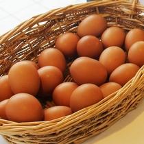 朝食の一例 地卵にこだわっています