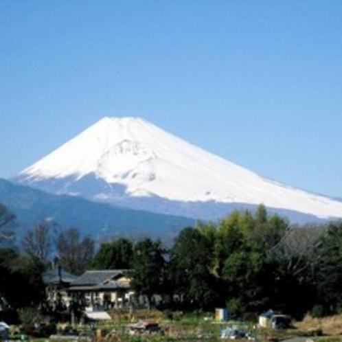 世界遺産「富士山」(冬)